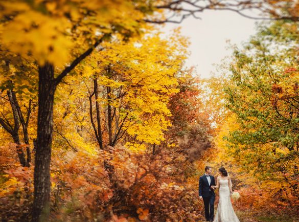 Photo 21 Central park wedding in NYC   Central park wedding planner, ideas in New York